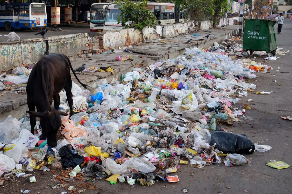 7131902631_2fa7ec9e6a_b-1024x680 Will Privatization of Solid Waste Management Solve Chennai's Woes