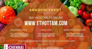 Buy Vegetables Online in Chennai and Tamilnadu